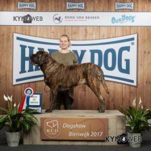 BEST_OF_BREED_609_BLEISWIJK_2017_Kynoweb_Ernst-von-Scheven-20171104-13-49-52-IMG_3452